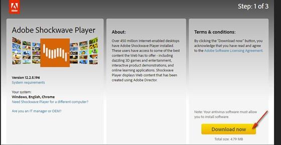 Скриншот программы adobe shockwave player