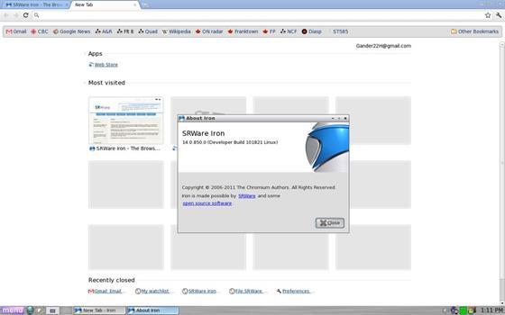 Скриншот программы srware iron