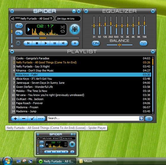 Скриншот программы spider player