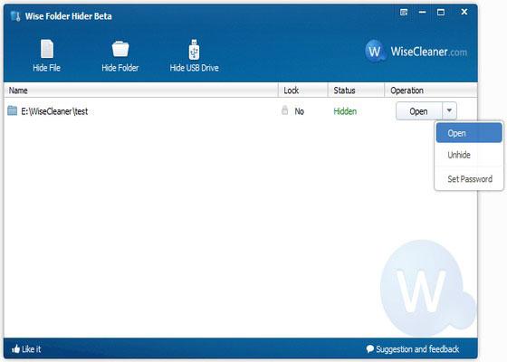 Скриншот программы wise folder hider