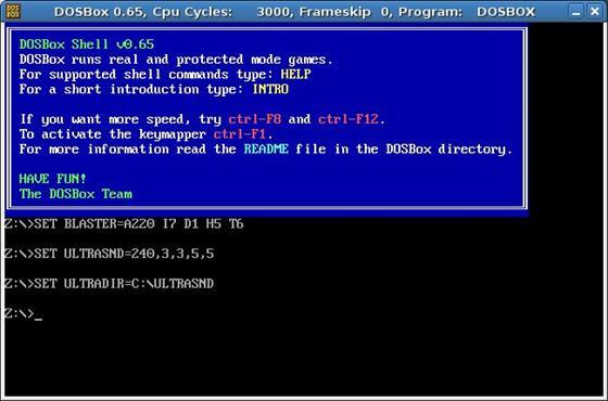 Скриншот программы dosbox