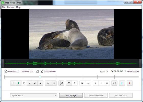 Скриншот программы free video editor