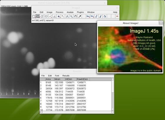 Скриншот программы imagej