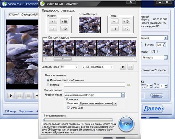 Скриншот программы video to gif