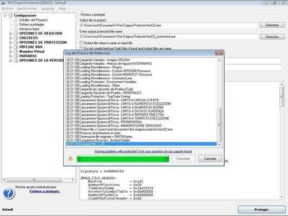 Скриншот программы the enigma protector