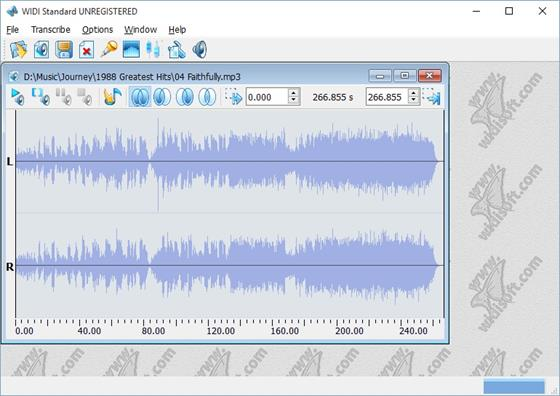 Скриншот программы widi recognition system