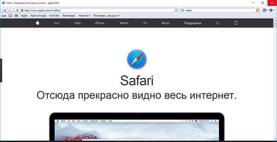 Скриншот программы safari