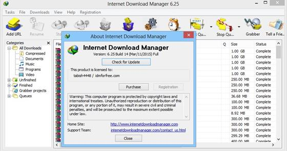 Скриншот программы internet download manager
