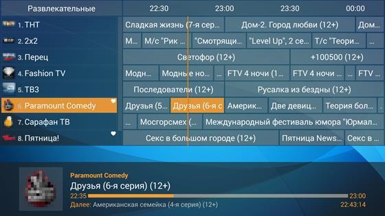 Скриншот программы perfect player