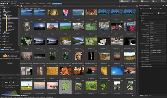 Скриншот программы acdsee pro