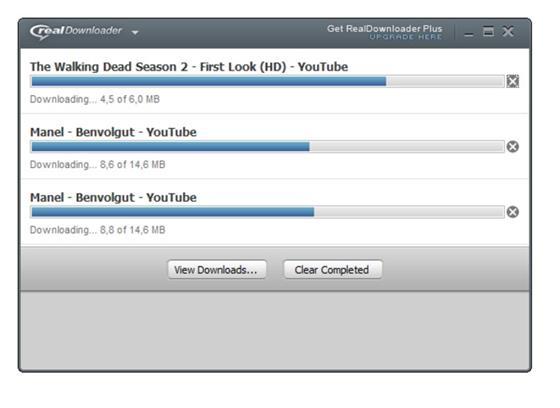 Скриншот программы realdownloader