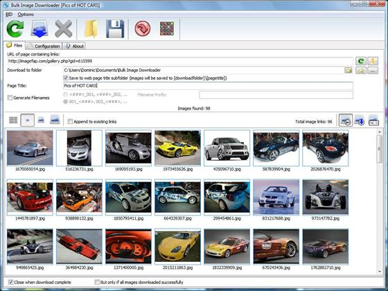 Скриншот программы bulk image downloader