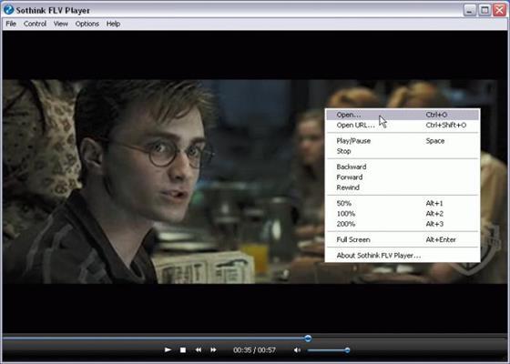 Скриншот программы flv player