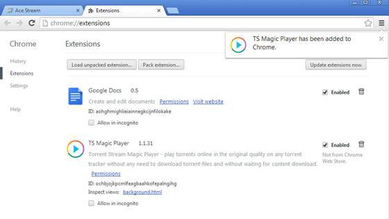 Скриншот программы ts magic player