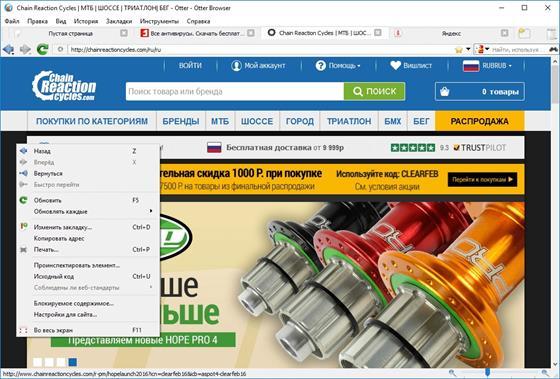 Скриншот программы otter browser