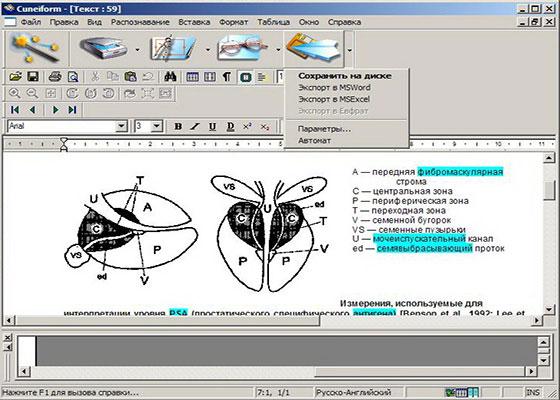 Скриншот программы cuneiform 12