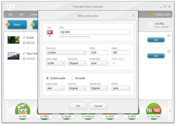Скриншот программы freemake video converter