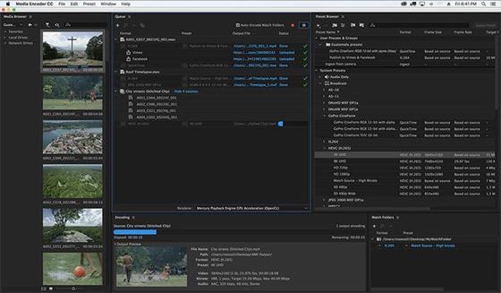 Скриншот программы adobe media encoder