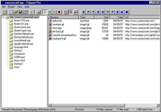 Скриншот программы teleport pro