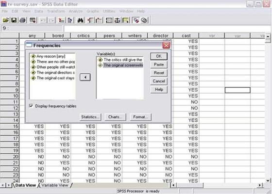 Скриншот программы spss