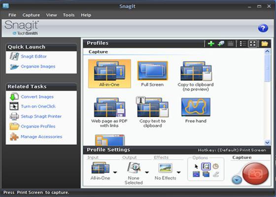Скриншот программы snagit