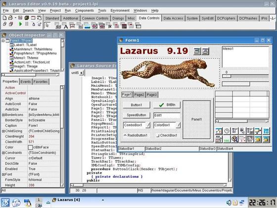 Скриншот программы lazarus
