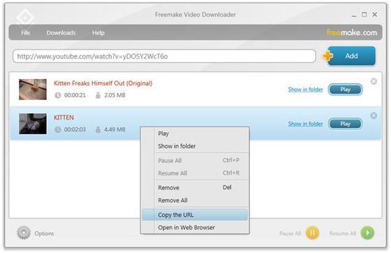 Скриншот программы freemake video downloader