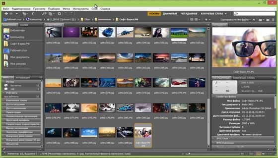Скриншот программы adobe bridge
