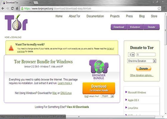 Скриншот программы tor browser 4.5