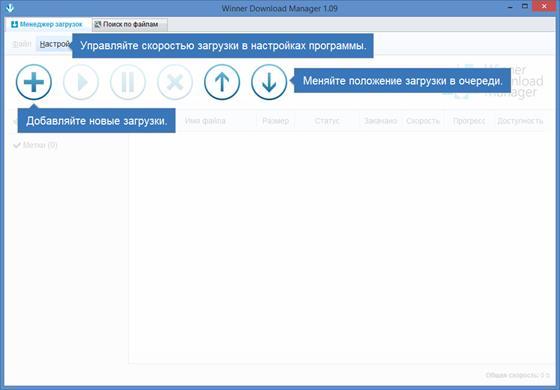 Скриншот программы winner download manager