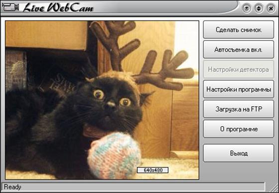 Скриншот программы live webcam