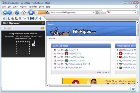 Скриншот программы flock